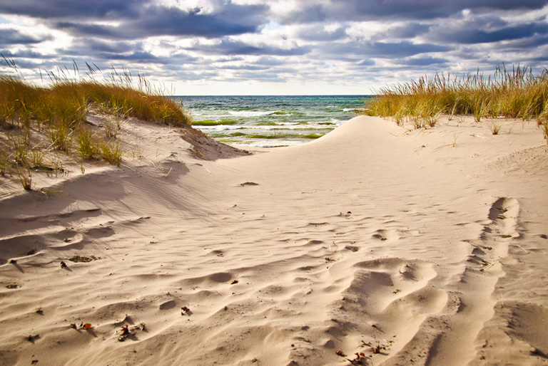 Printed Photography Sand Dunes Down To The Beach 40 Visuals